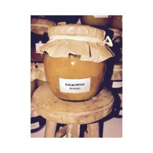 Eucalyptus-Honing 500 Gram